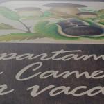 Appartamenti e Camere del Rifugio Altino di Montemonaco nei Monti Sibillini