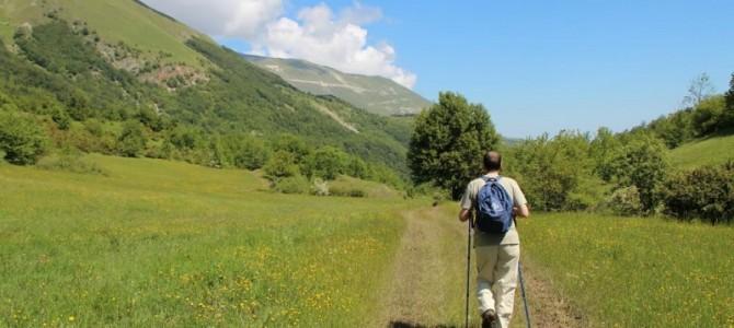 Escursione sul Sentiero dei Mietitori dal Rifugio di Altino a Colle di Montegallo Sabato 29 Giugno