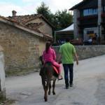 Trekking e Passeggiate con gli Asinelli ad Altino di Montemonaco12