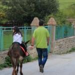 Trekking e Passeggiate con gli Asinelli ad Altino di Montemonaco6