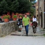 Trekking e Passeggiate con gli Asinelli ad Altino di Montemonaco7