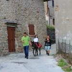 Trekking e Passeggiate con gli Asinelli ad Altino di Montemonaco9