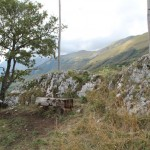 Weekend dei Funghi al Rifugio Altino92