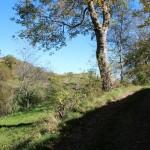 Altino di Montemonaco nei Monti Sibillini74
