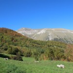 Altino di Montemonaco nei Monti Sibillini77