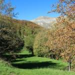 Altino di Montemonaco nei Monti Sibillini79