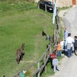 Weekend Autunno al Rifugio Altino34