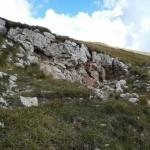 Weekend dei Funghi al Rifugio Altino7