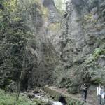 Ponte dei Santi al Rifugio Altino44