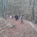 Ponte dei Santi al Rifugio Altino52