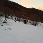 Escursione sul sentiero dei Mietitori dal Rifugio Altino di Montemonaco6