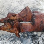 Il Porceddu sardo al Rifugio Altino di Montemonaco 10