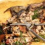 Il Porceddu sardo al Rifugio Altino di Montemonaco 19