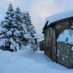 Prima neve inverno 2013 al Rifugio Altino14