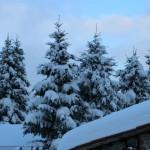 Prima neve inverno 2013 al Rifugio Altino24