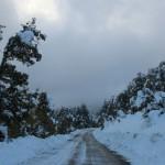 Prima neve inverno 2013 al Rifugio Altino4