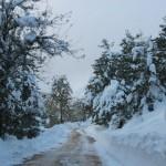 Prima neve inverno 2013 al Rifugio Altino6