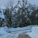 Prima neve inverno 2013 al Rifugio Altino7