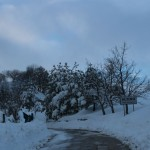 Prima neve inverno 2013 al Rifugio Altino9