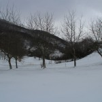 2014-01-25 Neve ed Escursionisti al Rifugio Altino10