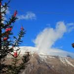 Escursione di Capodanno dal Rifugio Altino a Santa Maria in Pantano