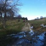 Escursione di Capodanno dal Rifugio Altino a Santa Maria in Pantano15