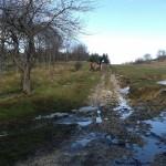 Escursione di Capodanno dal Rifugio Altino a Santa Maria in Pantano16
