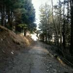 Escursione di Capodanno dal Rifugio Altino a Santa Maria in Pantano23
