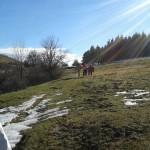 Escursione di Capodanno dal Rifugio Altino a Santa Maria in Pantano30