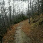 Escursione di fine anno dal Rifugio Altino a Rocca e Tofe e ritorno10