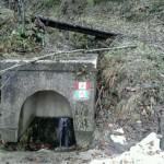 Escursione di fine anno dal Rifugio Altino a Rocca e Tofe e ritorno14