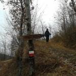 Escursione di fine anno dal Rifugio Altino a Rocca e Tofe e ritorno29