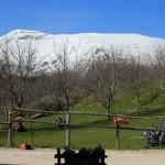 Domenica di Primavera al Rifugio Altino7