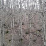 Escursione sul Sentiero delle Cacce dal Rifugio Altino di Montemonaco14