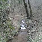 Escursione sul Sentiero delle Cacce dal Rifugio Altino di Montemonaco21