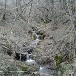 Escursione sul Sentiero delle Cacce dal Rifugio Altino di Montemonaco27