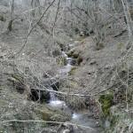 Escursione sul Sentiero delle Cacce dal Rifugio Altino di Montemonaco29