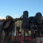Serata Bud Spencer & Terence Hill al Rifugio Altino di Montemonaco4