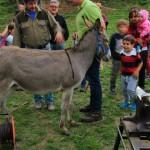 Week end delle Castagne al Rifugio Altino di Montemonaco sui Monti Sibillini36