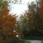 Un week end d'autunno al Rifugio Altino di Montemonaco sui Monti Sibillini6