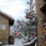 29-30 Dicembre 2014 - La neve continua a scendere12