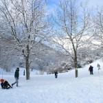29-30 Dicembre 2014 - La neve continua a scendere2