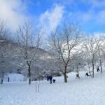 29-30 Dicembre 2014 - La neve continua a scendere4