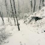 Ciaspolata dal Rifugio Altino a Santa Maria in Pantano24