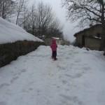 Ciaspolata per Famiglie al Rifugio Altino con gli animali del bosco21