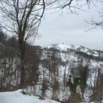 Ciaspolata per Famiglie al Rifugio Altino con gli animali del bosco4