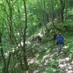 Escursione alle Gole dell Infernaccio fino all Eremo di San Leonardo11