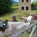 Weekend di fine Giugno al Rifugio Altino di Montemonaco58