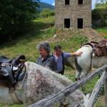 Weekend di fine Giugno al Rifugio Altino di Montemonaco59