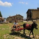 Primo weekend di Luglio al Rifugio Altino sui Monti Sibillini15